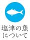塩津の魚について